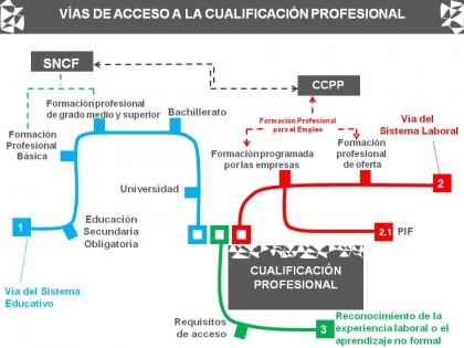 cualificacion profesional