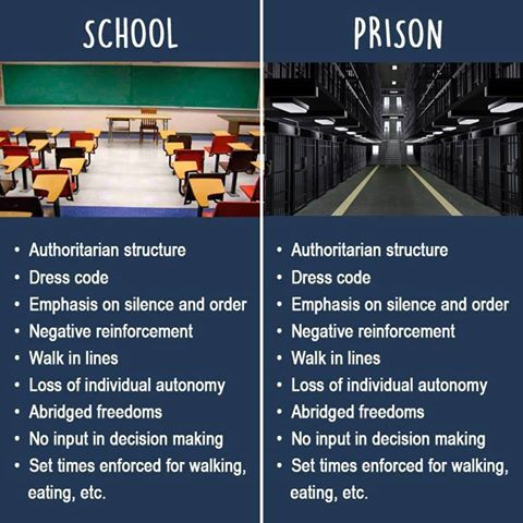 school-vs-prison