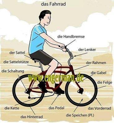 das-fahrrad