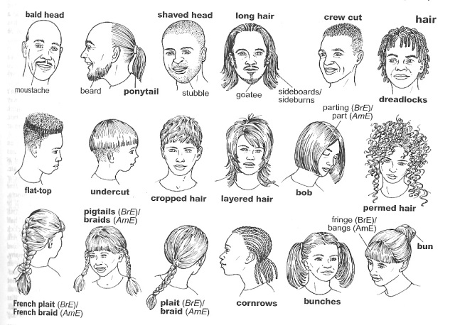 Describing hair